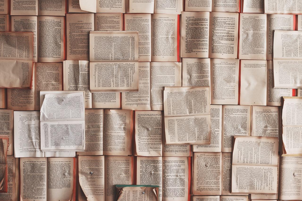 【副業】アマゾンで本がガバガバ売れる話[体験談・失敗談]初心者向けアフィリエイト